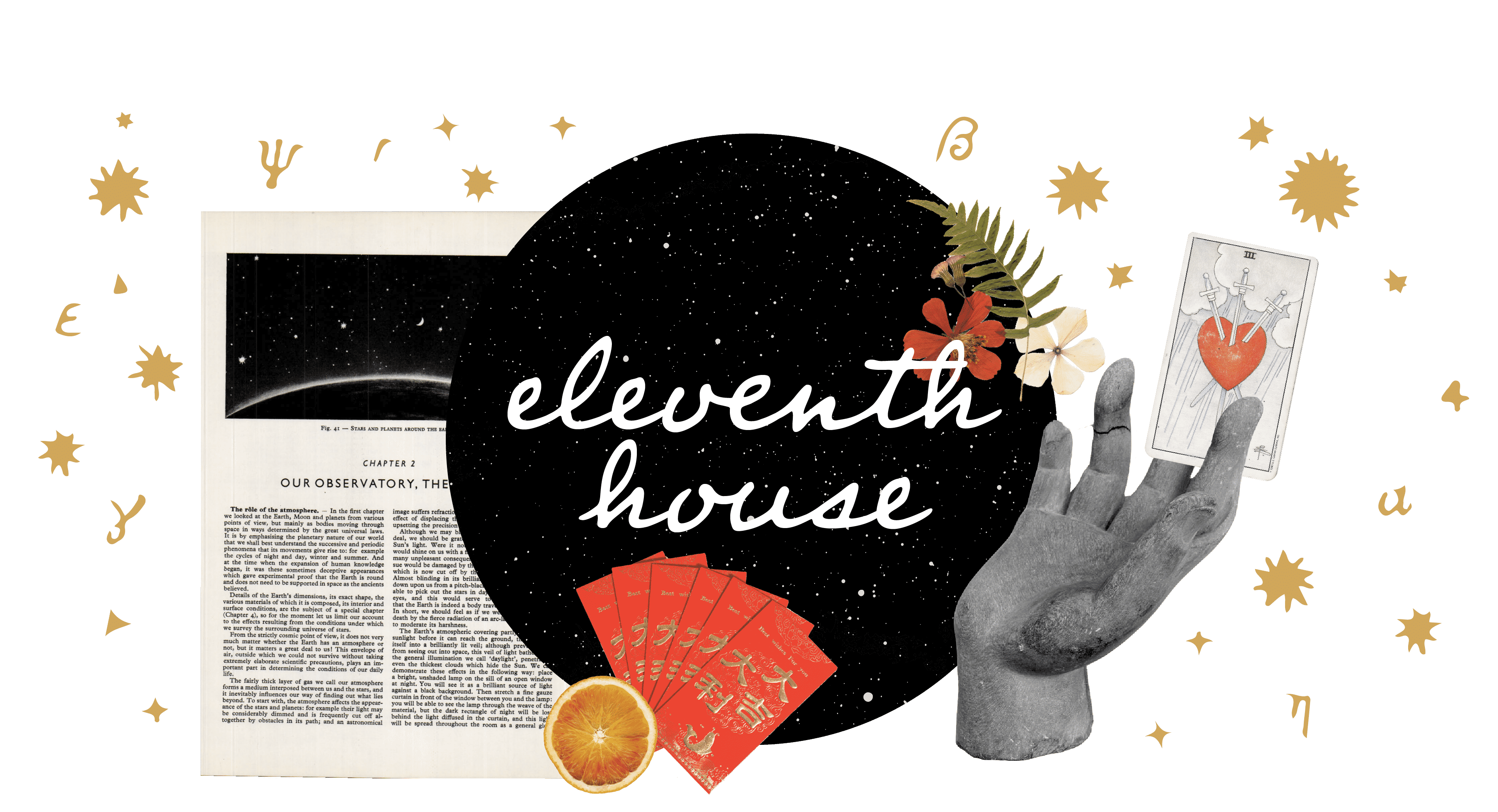 eleventh house