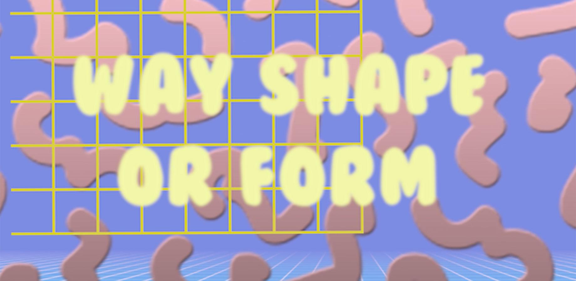 way shape or form